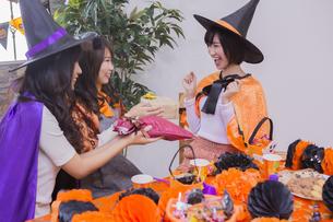 ハロウィンパーティーをする女性たちの写真素材 [FYI04260494]