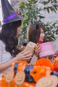 ハロウィンパーティーをする女性たちの写真素材 [FYI04260495]