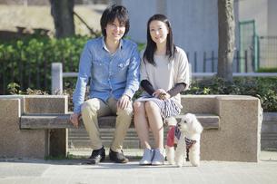 公園で散歩するカップルの写真素材 [FYI04263056]