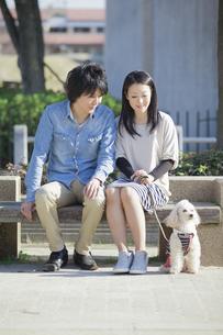 公園で散歩するカップルの写真素材 [FYI04263059]