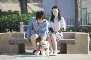 公園で散歩するカップルの写真素材 [FYI04263061]