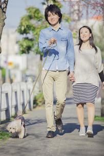 公園で散歩するカップルの写真素材 [FYI04263082]