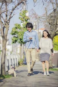 公園で散歩するカップルの写真素材 [FYI04263083]