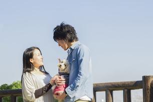 公園で散歩するカップルの写真素材 [FYI04263135]
