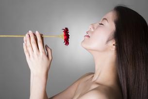 女性のポートレートの写真素材 [FYI04263379]