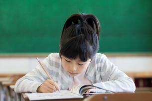 教室で勉強する女の子の写真素材 [FYI04263774]