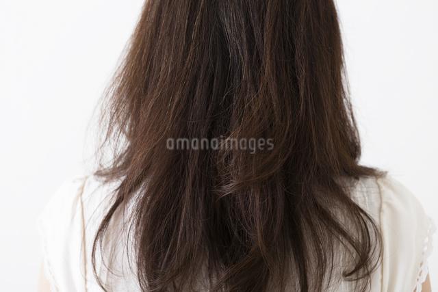ミドル女性の後ろ姿の写真素材 [FYI04265521]