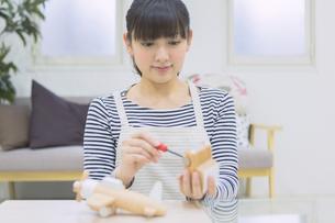 DIYをする女性の写真素材 [FYI04266630]