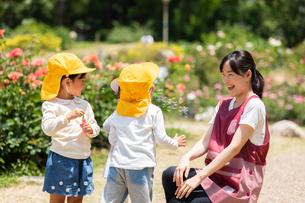 公園で遊ぶ保育士と園児の写真素材 [FYI04267725]