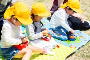 公園でお弁当を食べる園児の写真素材 [FYI04267749]