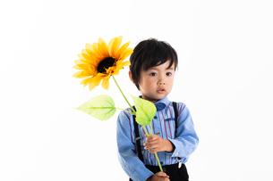 男の子のポートレートの写真素材 [FYI04268944]