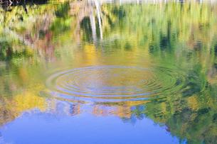 紅葉池の写真素材 [FYI04270044]