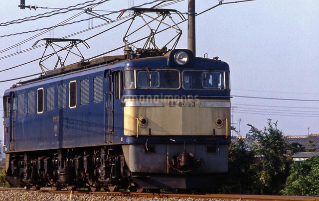 上越線 EF60電気機関車牽引貨物列車の写真素材 [FYI04270265]
