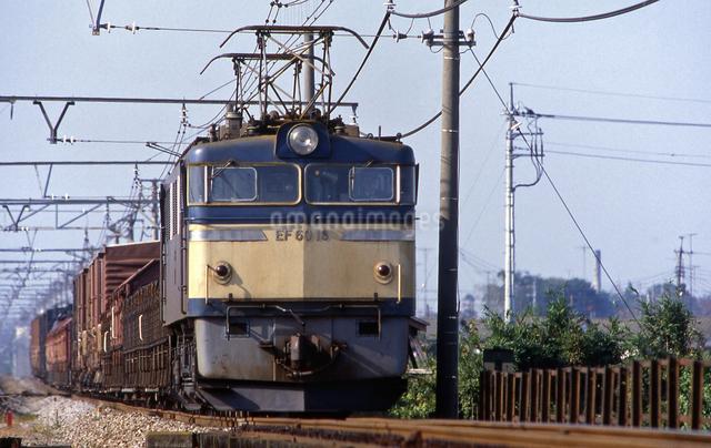 上越線 EF60電気機関車牽引貨物列車の写真素材 [FYI04270268]