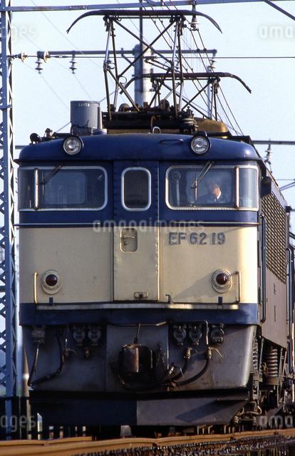 上越線 EF62電気機関車牽引貨物列車の写真素材 [FYI04270269]