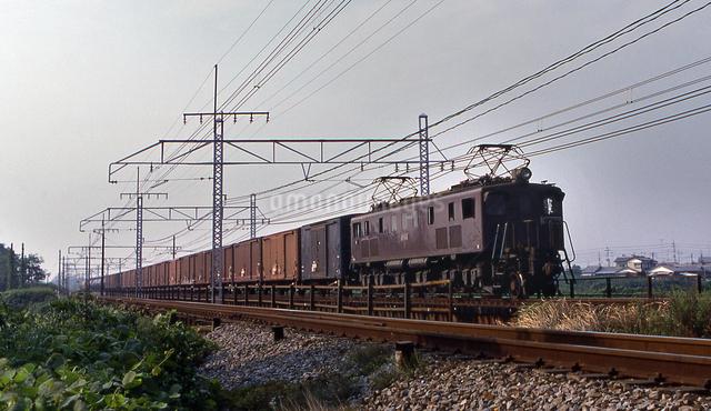 上越線 EF15電気機関車牽引貨物列車の写真素材 [FYI04270275]