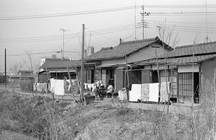 開業まじかの武蔵野線沿線の写真素材 [FYI04270375]