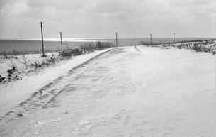 凍てついた道の写真素材 [FYI04270507]