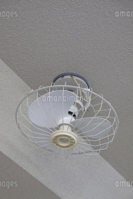 天井扇風機の写真素材 [FYI04270801]