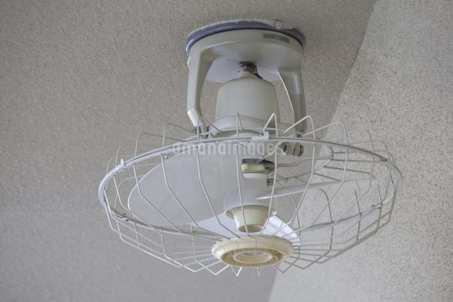 天井扇風機の写真素材 [FYI04270803]