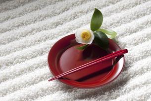 和食器と白ツバキの写真素材 [FYI04271458]