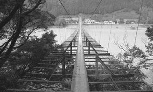 大井川に架かる吊橋の写真素材 [FYI04273166]