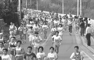 第17回青梅報知マラソン大会の写真素材 [FYI04273314]