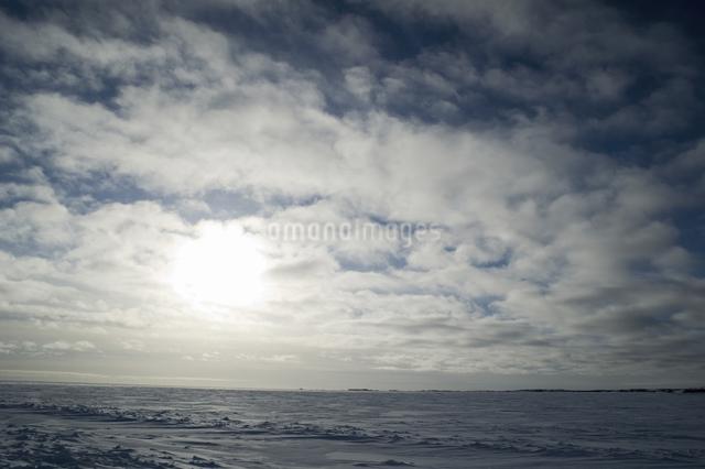 グレートスレイブ湖の雪原の写真素材 [FYI04273535]