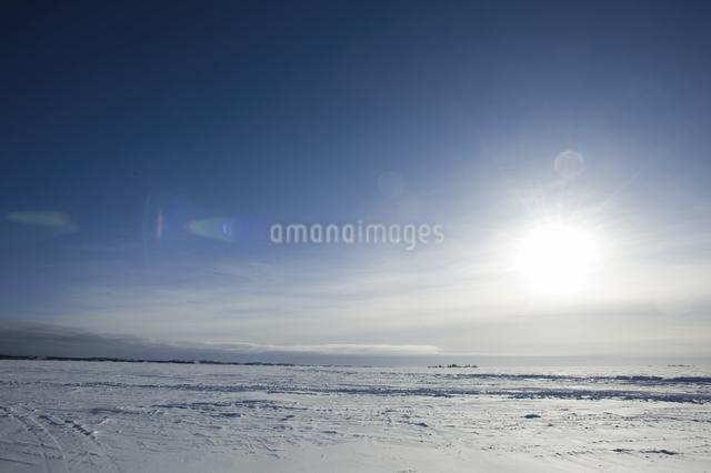 グレートスレイブ湖の雪原の写真素材 [FYI04273539]