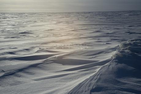 グレートスレイブ湖の雪原の写真素材 [FYI04273540]