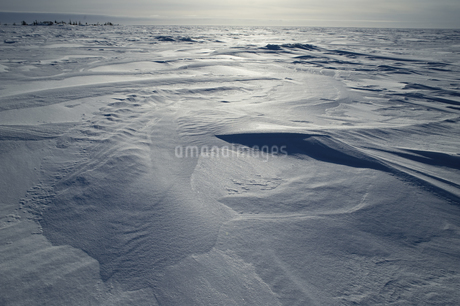 グレートスレイブ湖の雪原の写真素材 [FYI04273543]