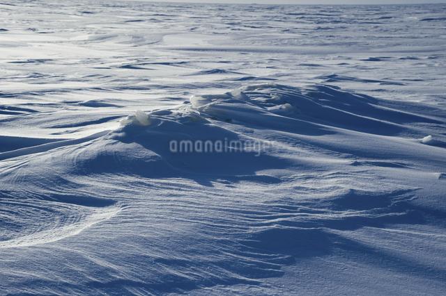 グレートスレイブ湖の雪原の写真素材 [FYI04273544]