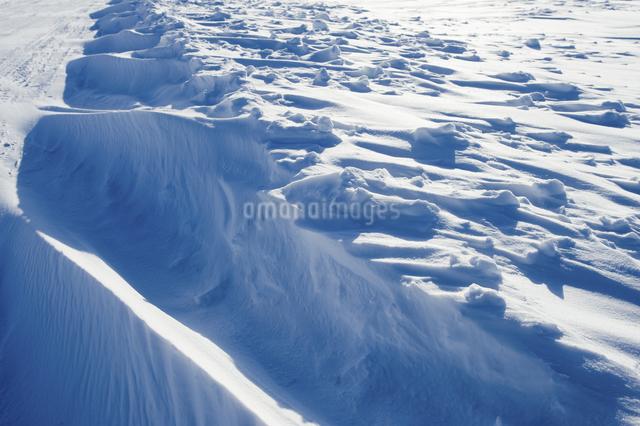 グレートスレイブ湖の雪原の写真素材 [FYI04273545]