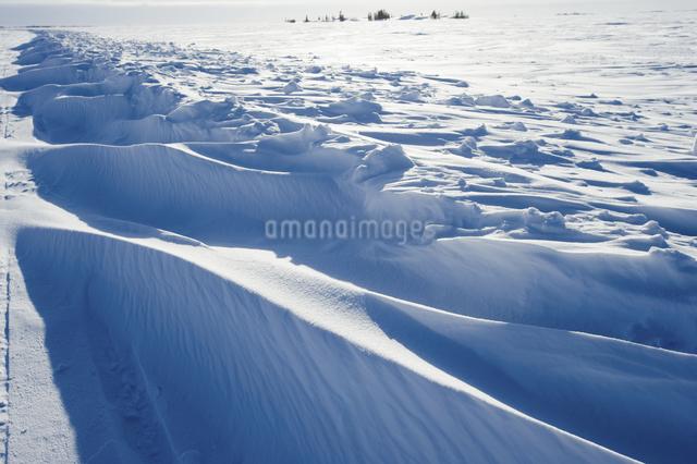 グレートスレイブ湖の雪原の写真素材 [FYI04273546]