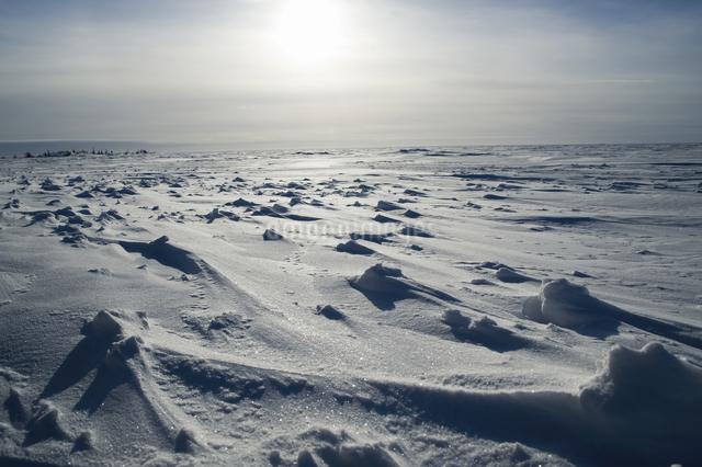 グレートスレイブ湖の雪原の写真素材 [FYI04273550]