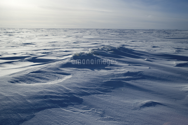 グレートスレイブ湖の雪原の写真素材 [FYI04273552]