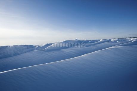 グレートスレイブ湖の雪原の写真素材 [FYI04273553]