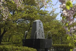 天道公園の写真素材 [FYI04273894]