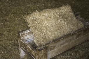 六甲牧場の牛舎と干し草の写真素材 [FYI04274089]