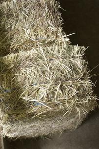 六甲牧場の牛舎の干し草の写真素材 [FYI04274093]