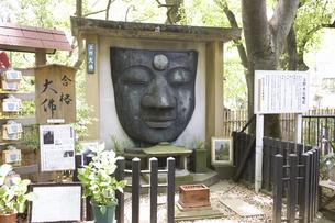 上野大仏の写真素材 [FYI04274392]