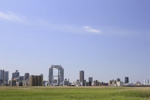 淀川河川敷からみる大阪の写真素材 [FYI04274421]