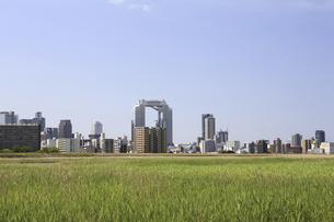淀川河川敷からみる大阪の写真素材 [FYI04274424]