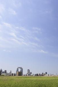 淀川河川敷からみる大阪の写真素材 [FYI04274425]