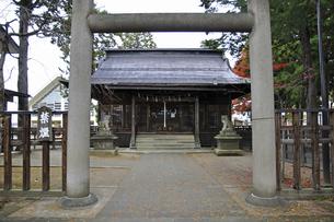 晩秋の米沢・松岬神社の写真素材 [FYI04275163]