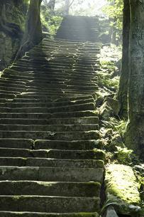 佐毘売山神社の石段の写真素材 [FYI04275342]
