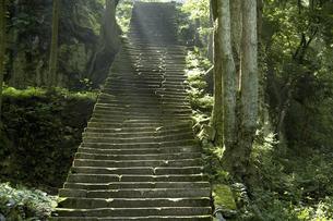 佐毘売山神社の石段の写真素材 [FYI04275347]