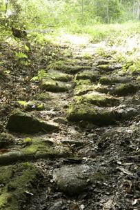 清水の石段の写真素材 [FYI04275350]