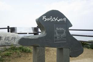 ちゅらさんの丘の写真素材 [FYI04275446]