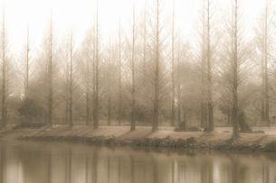 池のある風景の写真素材 [FYI04275462]